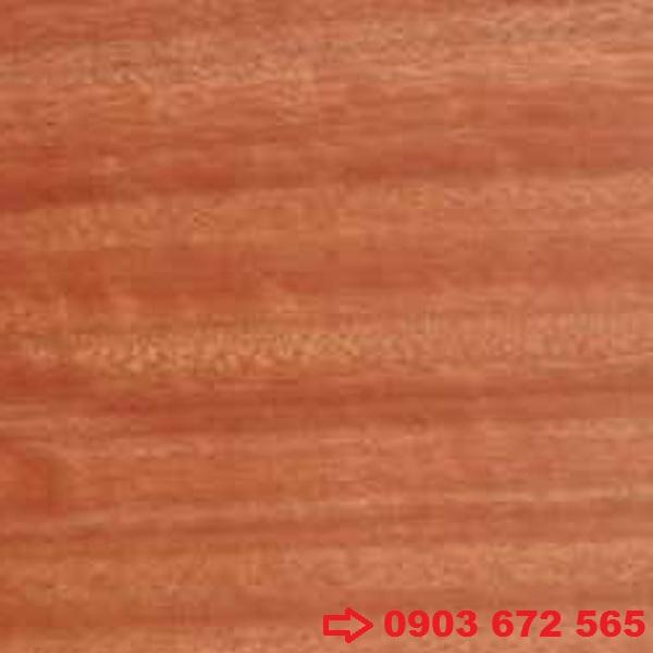 Gỗ Hồng Đàn (Gỗ đỏ Nam Mỹ)