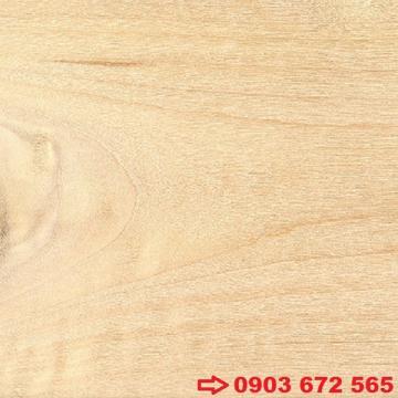 Gỗ Dương Hoa Kỳ (Gỗ Cottonwood)